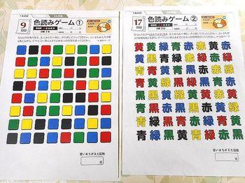 デュアル① - コピー.JPG