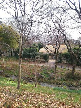 郷土の森ブログ③.jpg